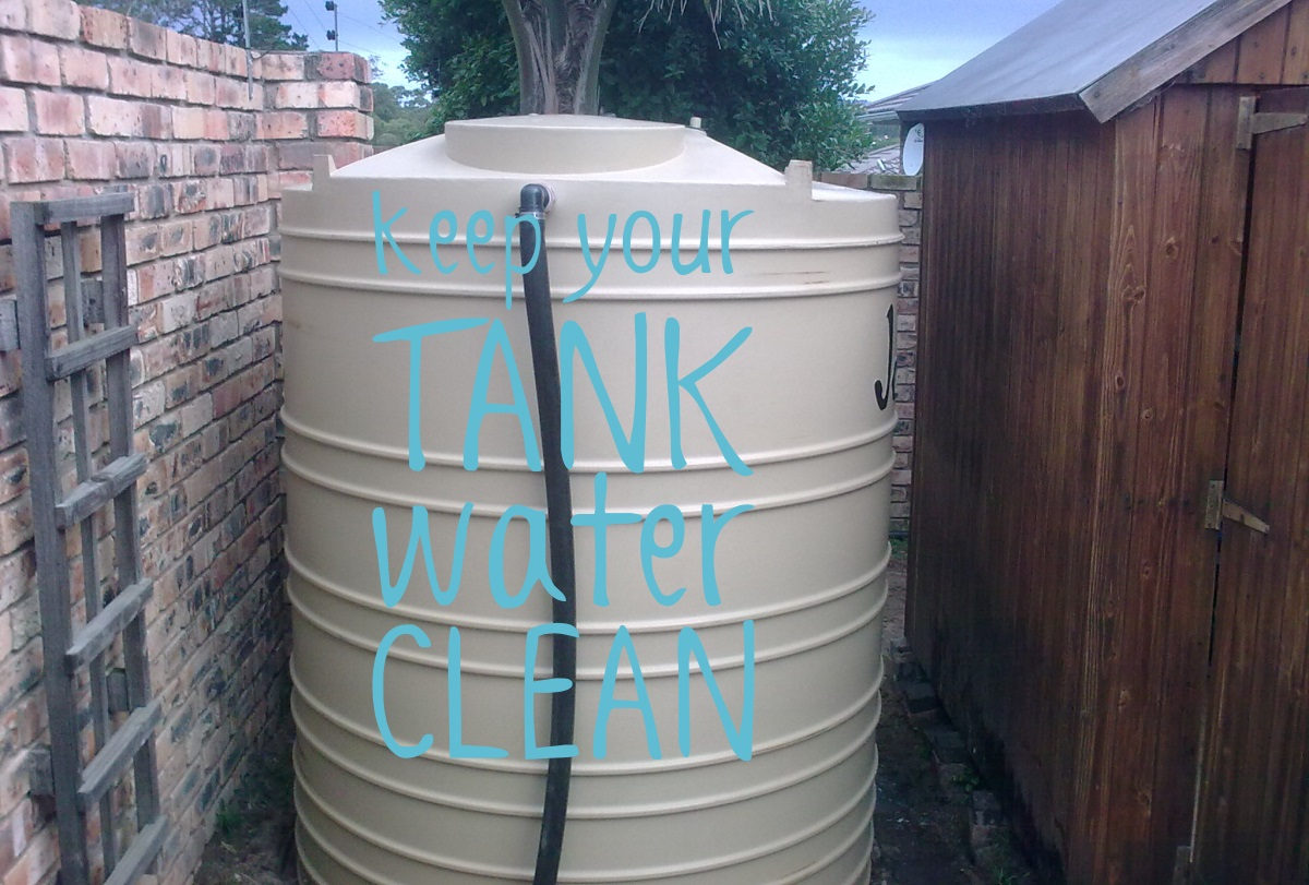 keep your water tank and harvested rainwater clean